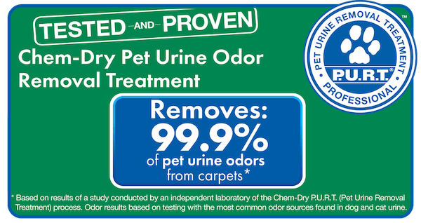 pet urine and odor removal chicago il
