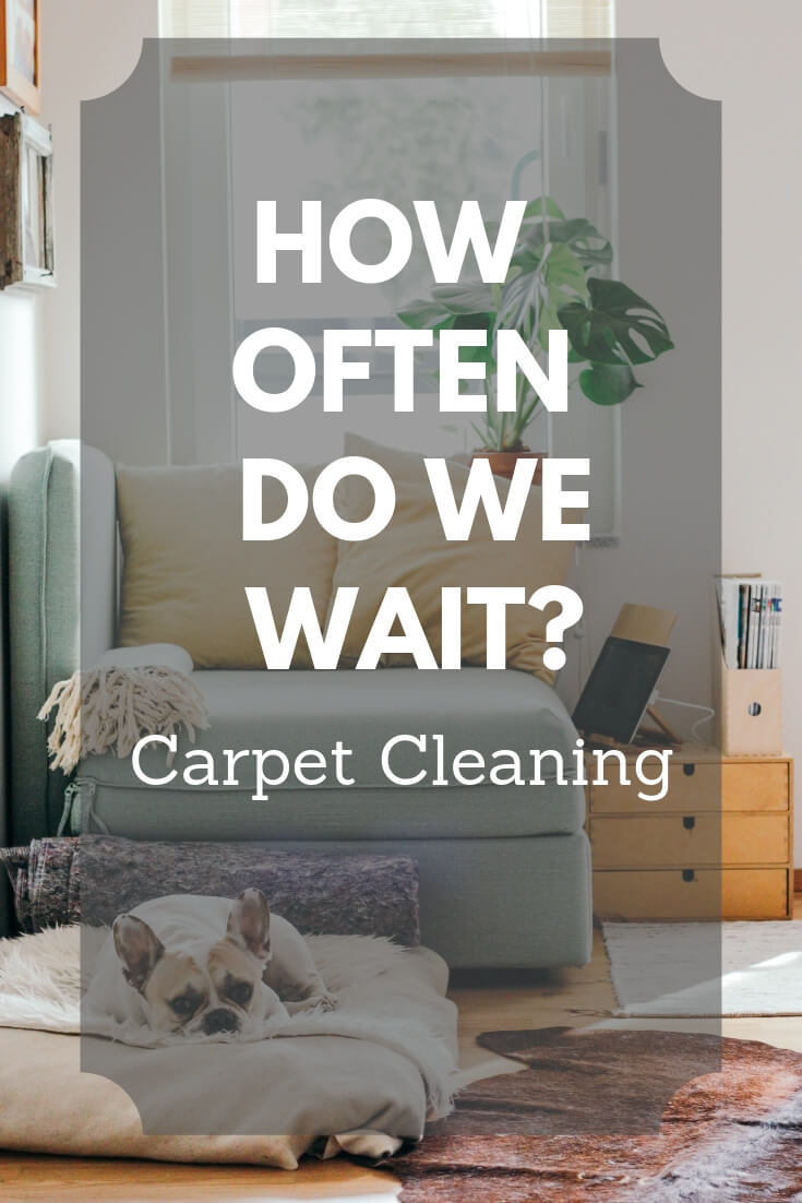 how long do we wait carpet cleaning