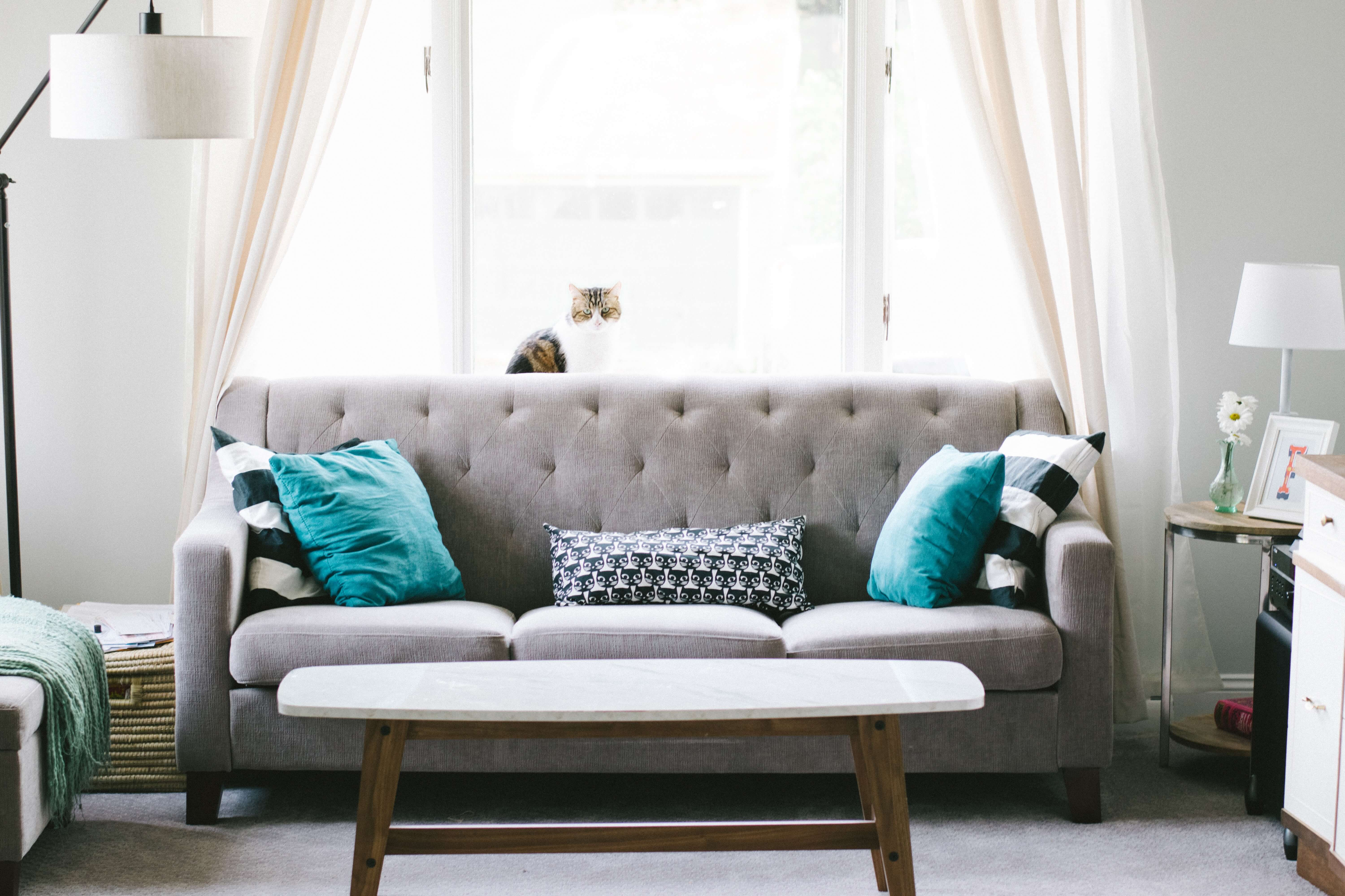 gray couch in living room in Tulsa, OK